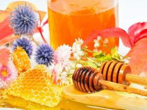 Miel y flores