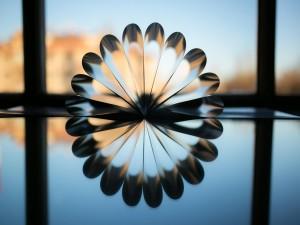 Pétalos reflejados formando una flor