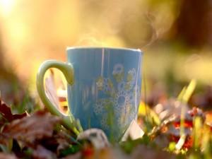 Taza humeante de té sobre la hierba