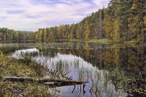 Día de otoño junto a un lago