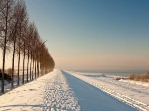 Una mañana de frío invierno