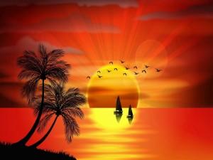 Isla tropical con palmeras, pájaros y veleros en el ocaso del sol