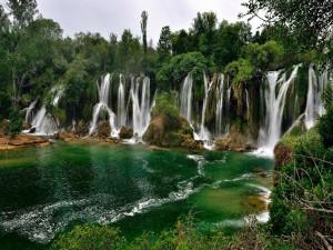 Varias cascadas fluyendo entre los árboles