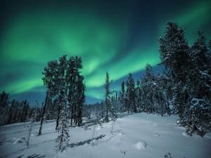 Aurora boreal sobre un paisaje nevado