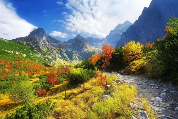 Los colores del otoño bajo las montañas