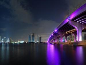 Magnífico puente con luces fucsias en la ciudad de Miami