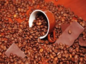 Onzas de chocolate entre granos de café