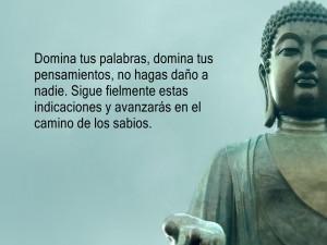 Frase junto a Buda