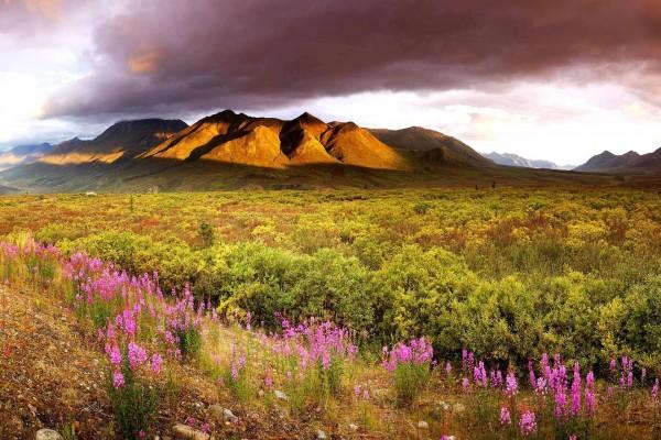Hermoso valle bajo las montañas