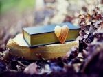 Corazón de madera junto a unos libros