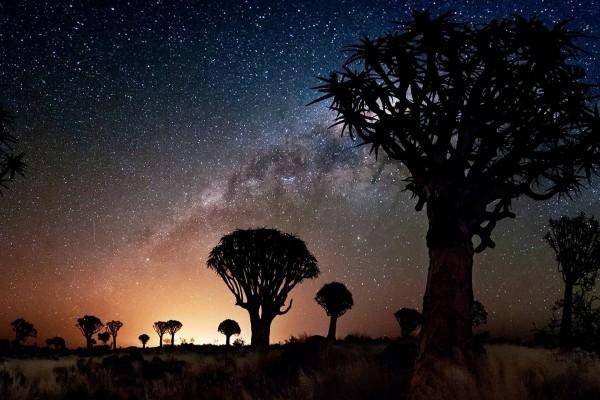 Hermoso cielo estrellado
