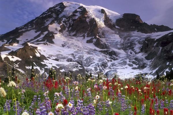 Primavera bajo la montaña