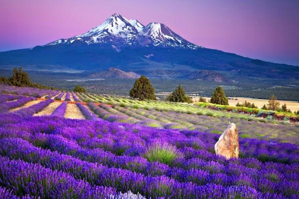 Un bonito valle bajo la montaña