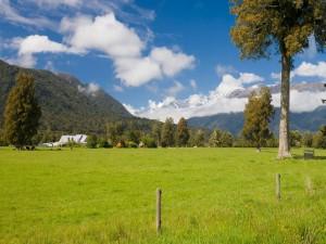 Tierras de labranza en Nueva Zelanda