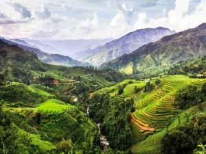 Río entre campos de cultivo