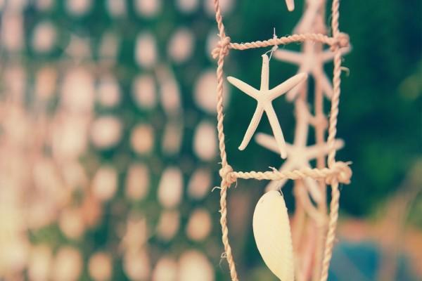 Estrella de mar en un elemento decorativo