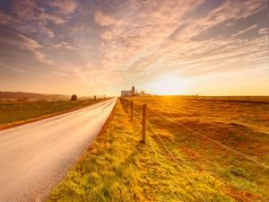Carretera en una zona rural