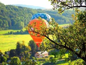 Dos globos volando sobre un campo verde