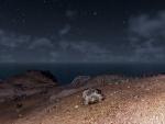 Cielo estrellado sobre el mar