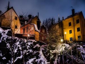 Farolas iluminando la nieve en una zona residencial