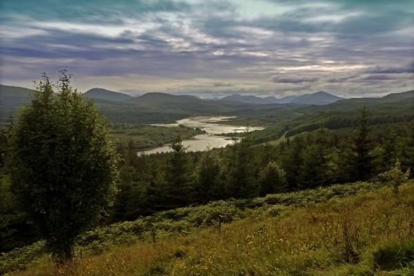 Estimulante paisaje de un río entre colinas verdes