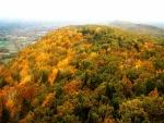 Vista aérea de los colores del otoño