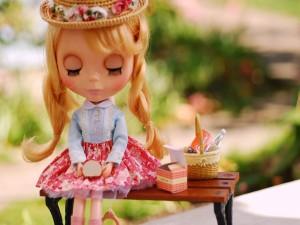 Muñeca de picnic