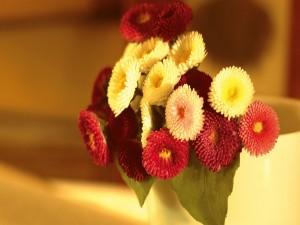 Ramillete de crisantemos