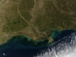 Vista satélite del Delta del Misisipi