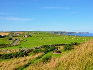 Campo y acantilados junto al mar