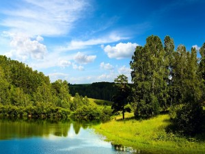 Día de verano en el río