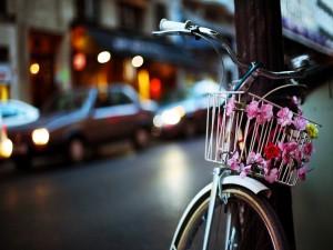 Bicicleta adornada con unas flores