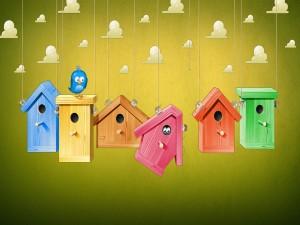Pajaritos en unas casitas de colores