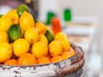 Barril con naranjas, limones y limas