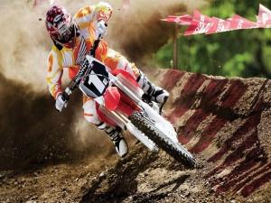 Competición de motocross