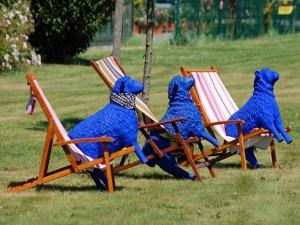 Ovejas azules sentadas en unas tumbonas
