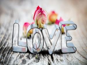 """Rosa sobre la palabra """"Love"""""""