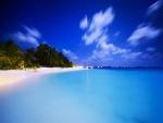 Estrellas sobre una hermosa playa tropical