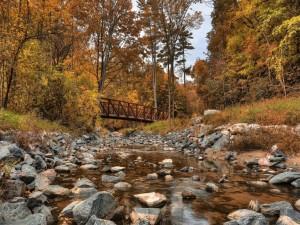 Río con poca agua en otoño