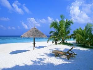 Tumbona y palmeras en una playa de arena blanca