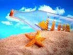 Estrella de mar junto a una botella con un barco dentro