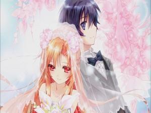 """Kirito y Asuna del popular anime """"Sword Art Online """""""