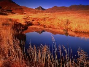 Lago en las llanuras