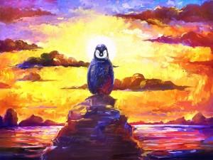 Pingüino sobre una roca