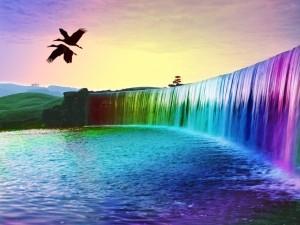 Aves volando sobre una cascada de colores
