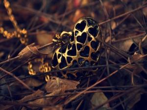 Colgante con forma de corazón sobre hojas secas