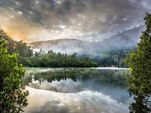 Brumoso amanecer en Berowra Creek (Sydney, Australia)