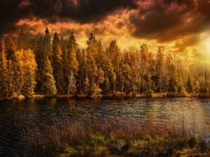 Cielo tormentoso sobre un río y el bosque