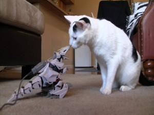 Gato observando a un robot