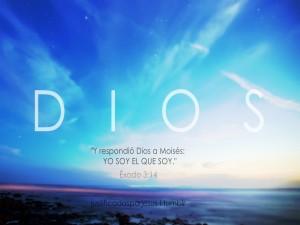 Y respondió Dios a Moisés: Yo soy el que soy (Éxodo 3:14)